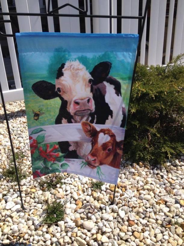 cow flag