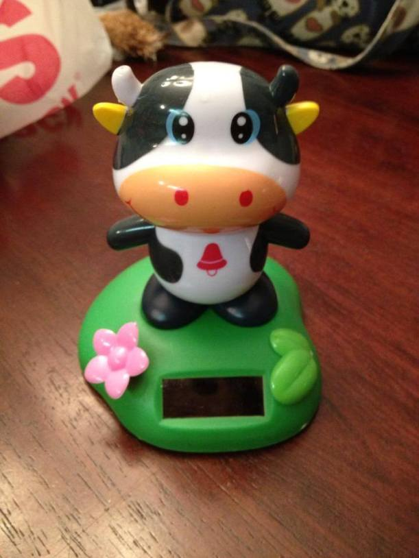 cow solar cow