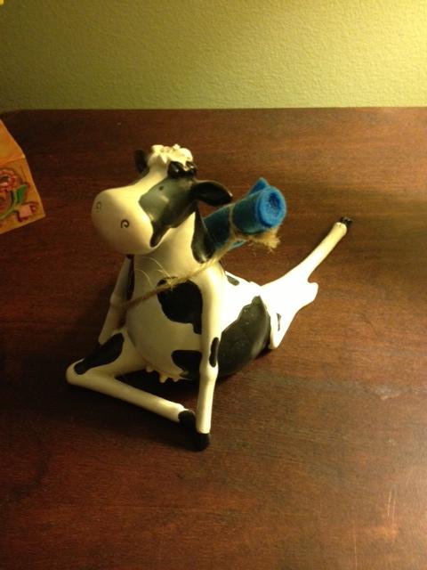 cow yoga cow