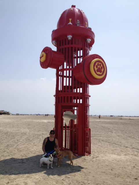 CM wildwood fire hydrant