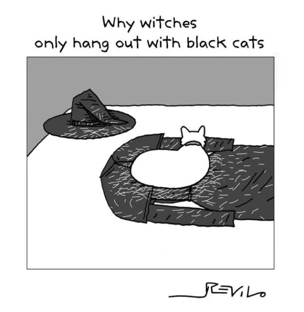 black cats cartoon