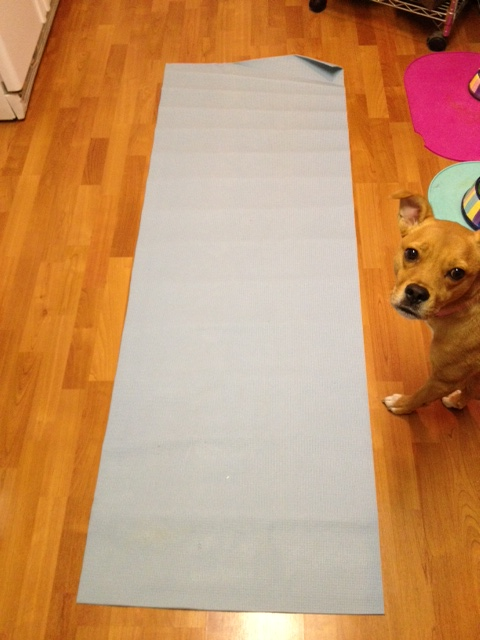 Sad, old, stinky yoga mat. (Hello, Sally!)